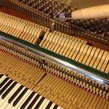 Настройка пианино  и роялей, Новосибирск