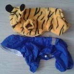 Два костюма для маленькой сабачки, Новосибирск
