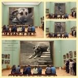 В самые ответственные руки отдаётся собака- подросток, Новосибирск