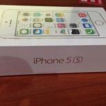 Apple iPhone 5s, Новосибирск