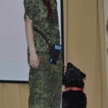Дрессировка собак / Решение бытовых проблем, Новосибирск
