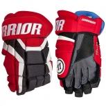 Хокейные перчатки (краги), Новосибирск