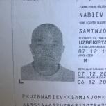 Потеряны документы, Новосибирск