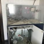 Продам маквариум, Новосибирск