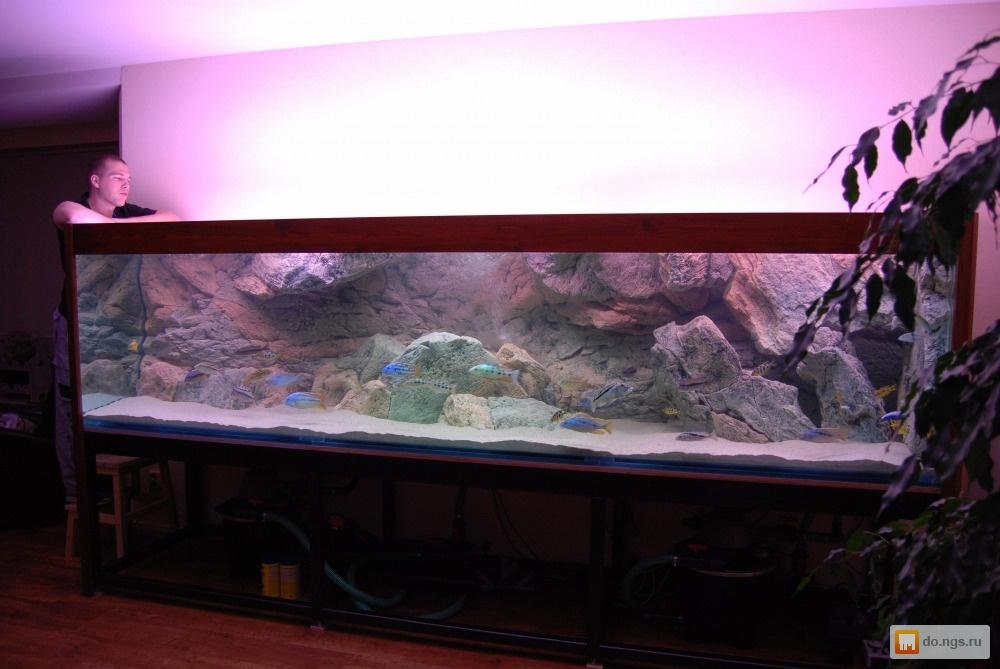 Изготовление фона на аквариума своими руками