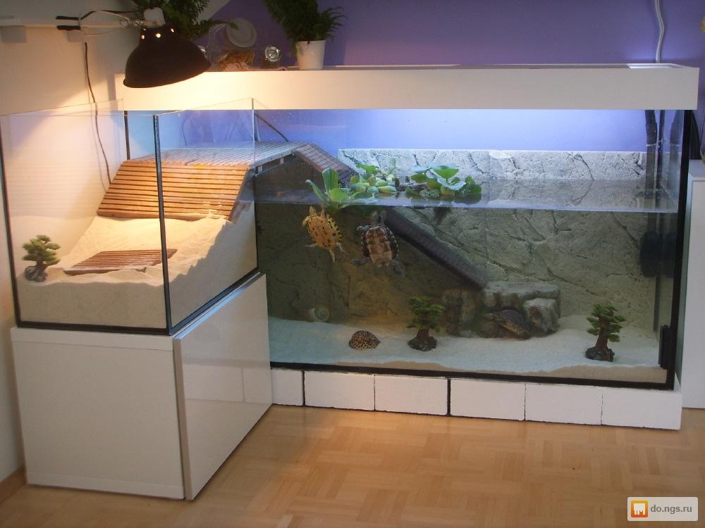 Как сделать островок в аквариум для черепахи своими руками