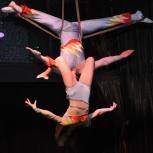 Акробатика взрослым. Pole dance детям и пр., Новосибирск