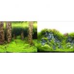 Аквариумный фон Затопленный лес/Камни с растениями 60 см, Новосибирск