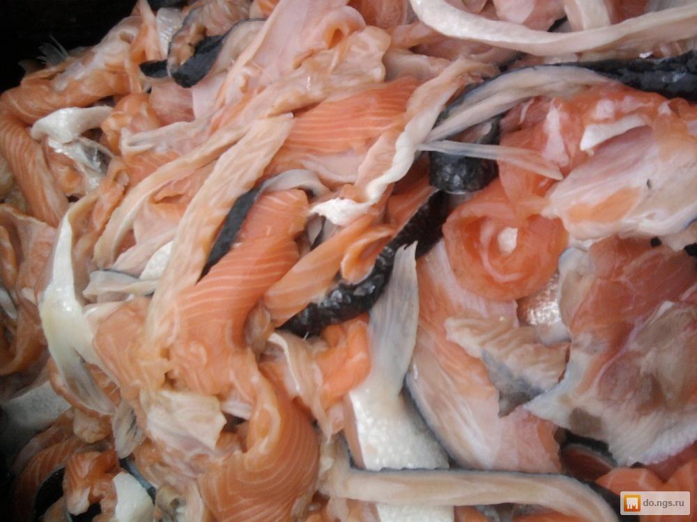 Как засолить обрезки лосося в домашних условиях