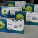 календарь домик, Новосибирск