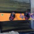 Продам сноуборд и ботинки, Новосибирск