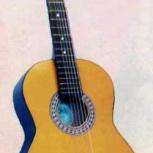 Новая гитара. Россия, Новосибирск