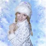 Новый Год. Дед Мороз и Снегурочка. Аниматоры, Новосибирск