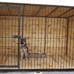 Вольер для собаки (шт), Новосибирск