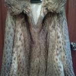 Продам шубу новую из камышового кота, р-р 44-48, Новосибирск