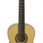 Классическая гитара FLIGHT C 100, Новосибирск