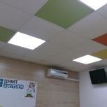 ремонт офисов - обои, покраска, армстронг, линолеум, Новосибирск