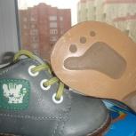 Продам ботинки ясельные Котофей, Новосибирск