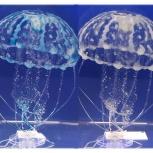Медуза силиконовая большая, Новосибирск