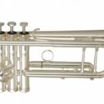 труба Wisemann DTR-800SP, Новосибирск