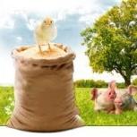 комбикорм для цыплят, бройлеров, несушек, пшеница, отруби, горох,просо, Новосибирск