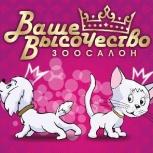 Стрижка собак и кошек, Новосибирск