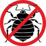 Профессионально уничтожаем насекомых и грызунов, Новосибирск