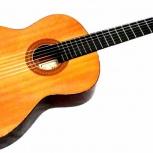 Ремонт гитар, скрипок, балалаек, домр, Новосибирск