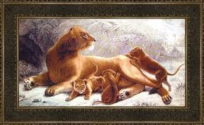 львенок и львица фото