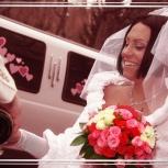 Профессиональный фотограф на вашу свадьбу. Низкие цены!, Новосибирск