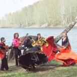 Цыганский ансамбль на ваш праздник, Новосибирск
