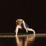 Pole dance, акробатика, танцы, цирковая школа для взрослых, Новосибирск
