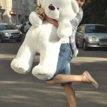 Большой плюшевый медведь, Новосибирск
