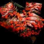 Маникюр, педикюр, укрепление ногтей гель-лаком, дизайн ногтей на дому., Новосибирск