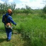 Покос травы, копка, Новосибирск