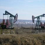 Нефть сырая поставки по РФ., Новосибирск