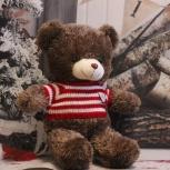 Плюшевый медведь Тёма, Новосибирск