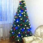 Искусственные ёлочки, Новосибирск
