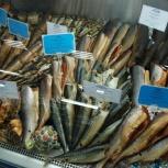 Холодильная витрина с подтоварником под Рыбу и рыбную продукцию., Новосибирск