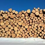 Продам лес кругляк (пиловочник), Новосибирск