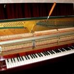 Фортепианный мастер с большим опытом работы, Новосибирск