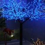 Cветящиеся деревья Сакура, Новосибирск