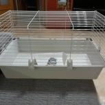 Клетка для кролика, хорька, свинки 80см, Италия, Новосибирск