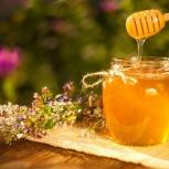 Натуральный Алтайский мёд!, Новосибирск
