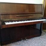 Пианино «Ростов-Дон», Новосибирск