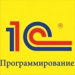 Программист 1С(удаленно/выезд), Новосибирск