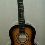 Акустическая шестиструнная гитара, Новосибирск