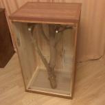 Продам клетку (витрину) для дегу или шиншиллы., Новосибирск