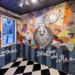 Граффити-оформление. Роспись стен в Новосибирске, Новосибирск