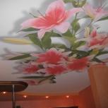 Натяжной потолок в зале квартиры с фотопечатью 12.5 кв.м шт., Новосибирск